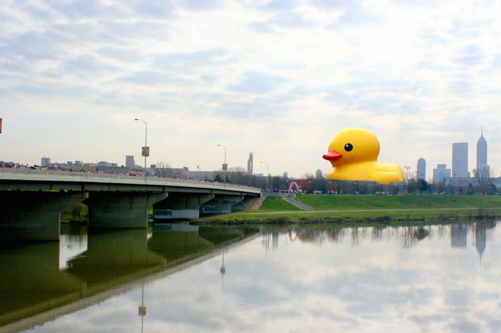 Rubber Ducky Invades Indianapolis